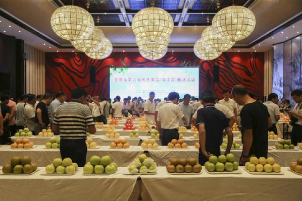安徽省優質果品(加工品) 展評活動在安徽省六安市舉行