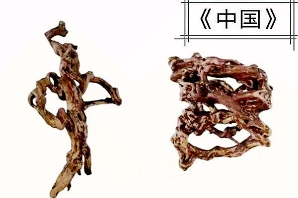 安徽望江:根雕艺术传递别样祝福