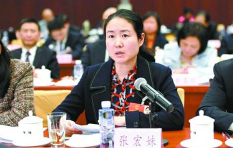 安徽代表委员全身心投入各项议程