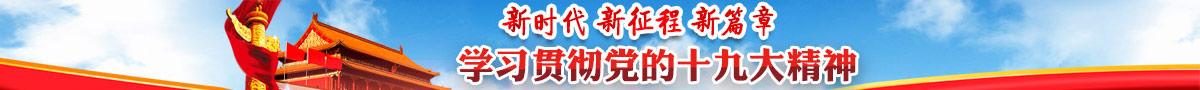 新華網十九大專題
