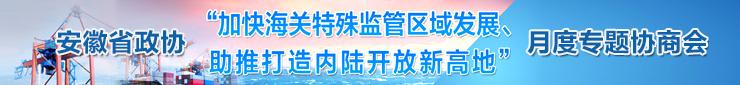安徽省政协月度专题协商会