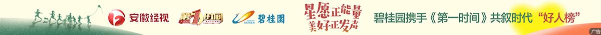 安徽卫视 碧桂园