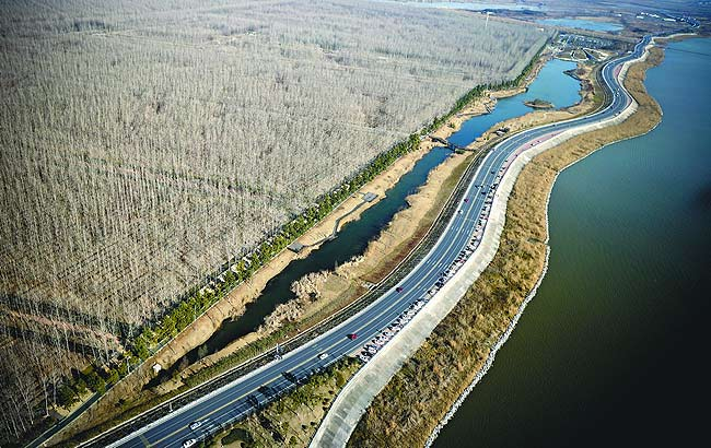 空中鸟瞰合肥滨湖湿地公园