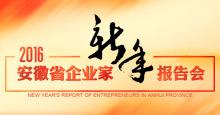 2016年安徽省企業家新年報告會