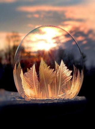 鏡頭中的冰凍肥皂泡 精致如魔法水晶球