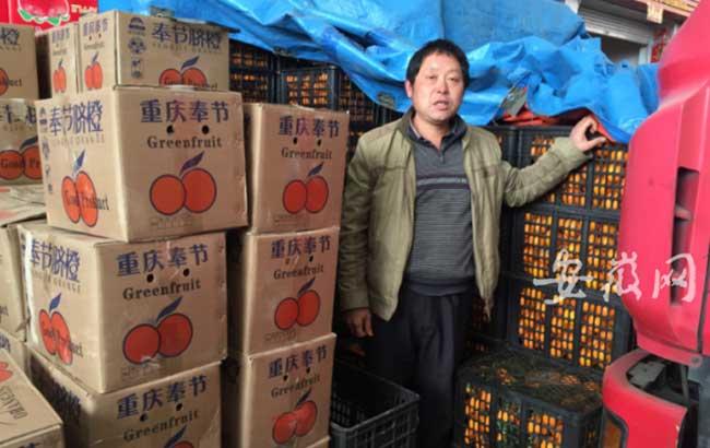 重慶果農千裏來宣城賣臍橙 運來兩萬斤無人問津