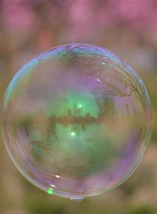泡泡裏的春色