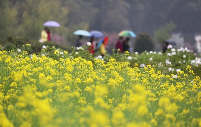 最美人間四月天 銅陵鳳凰山景區春景如畫
