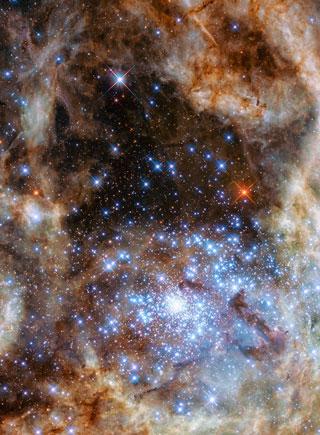 哈勃望遠鏡拍攝年輕星團:恒星灼熱明亮遠勝太陽