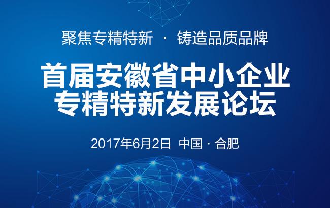 首届安徽省中小企业专精特新发展论坛