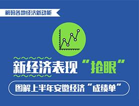 安徽上半年新经济抢眼 软件业增收近30%