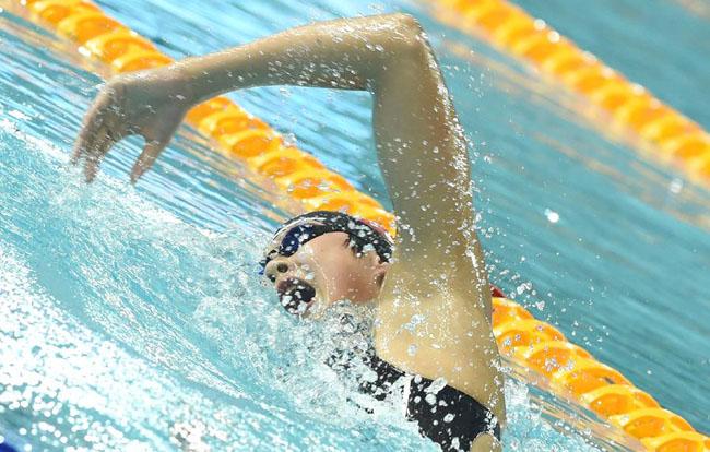 游泳——2017全国游泳锦标赛赛况
