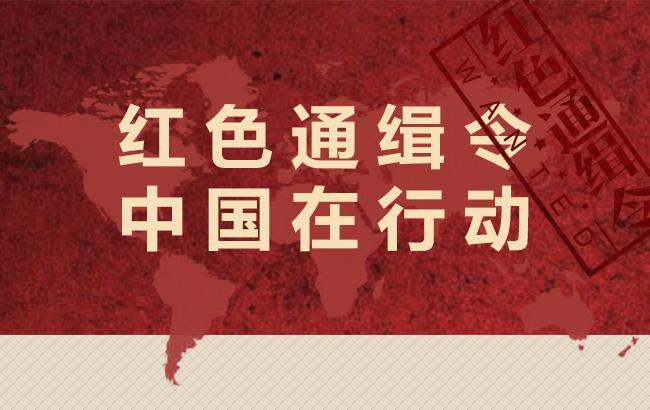 红色通缉令 中国在行动