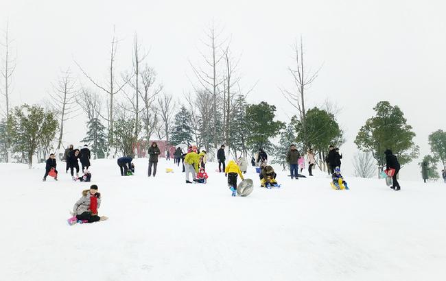 合肥:市民玩雪樂翻天