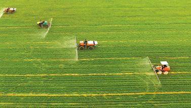 春耕生産進行時:各地春耕全面展開