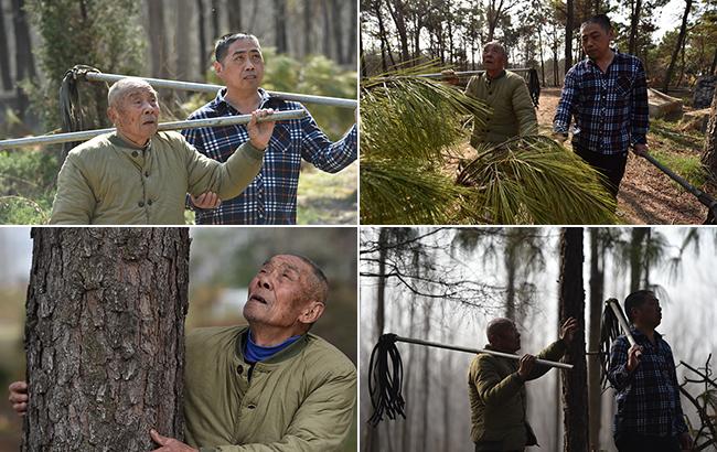 33年的護林與兩代人的守候