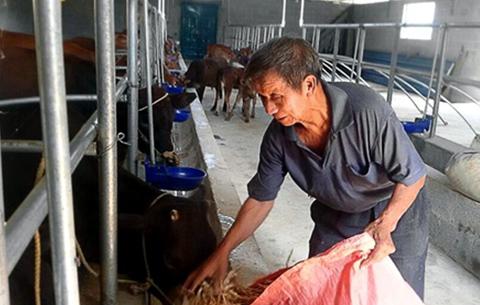 安徽:年底每個貧困村建成1個特色種養業扶貧基地