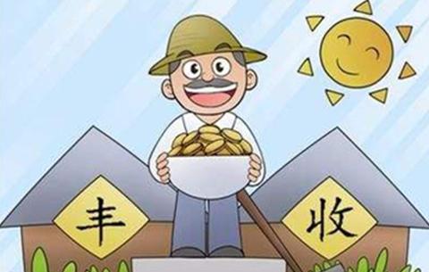 今年農民收入可望增長8.5%以上