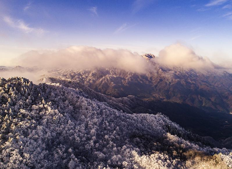 航拍大別山:雲雪離披山萬裏,萬樹松羅萬朵雲