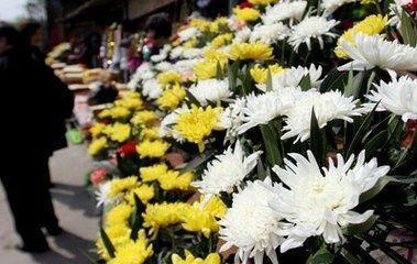 鲜花祭扫成首选 多个公墓鲜闻鞭炮声