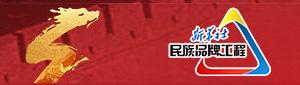 新華社民族(zu)品牌工作