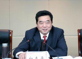 安徽省能源集团有限公司原董事长白泰平接受审查调查