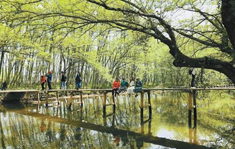 皖南国际文化示范区开展全域旅游创建