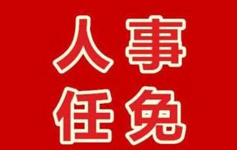 黄山市最新人事任免:张波任副市长