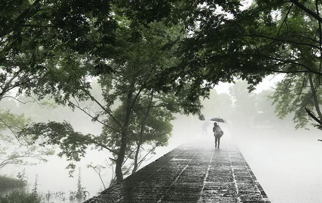 楊柳披綠雨瀟瀟 半煙半雨看溪橋