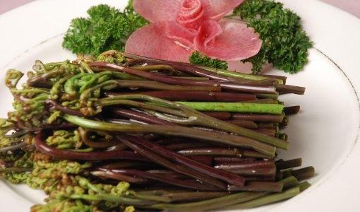 吃蕨菜致癌?安徽食药监提醒这些食品谣言别信