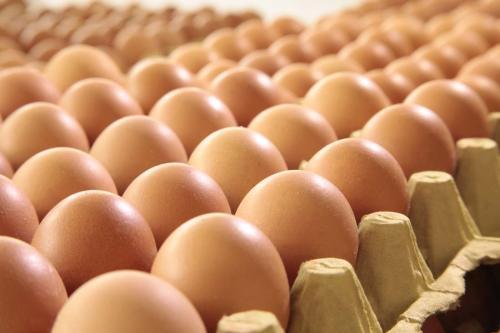 5月安徽果蔬蛋价格下降明显