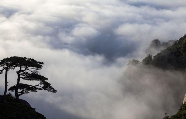 凌空而泻三千尺 夏至有约瀑布云