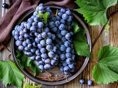 葡萄飄香到秋季 肥西花崗葡萄錯峰上市