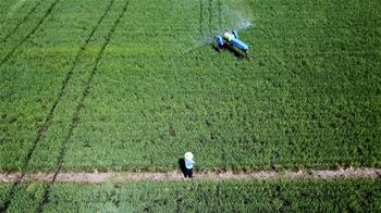 安徽:科學防治病蟲害器械展風採