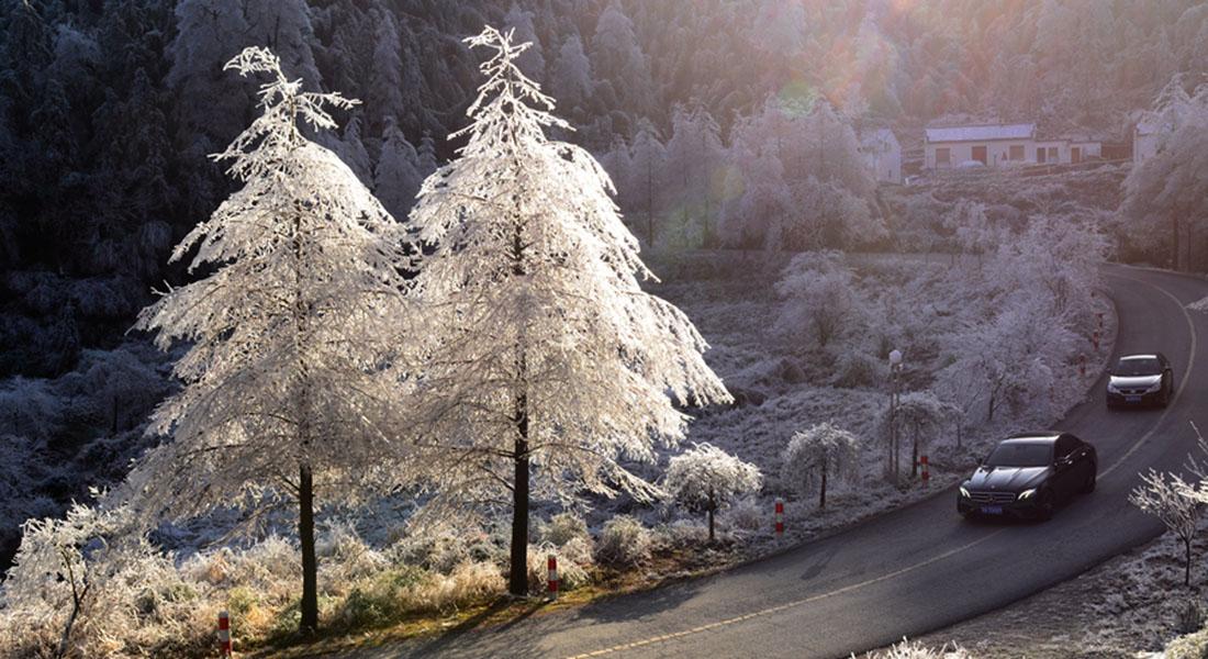 佛國聖境路亦美