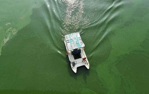航拍:連日高溫 巢湖出現局部性藍藻水華