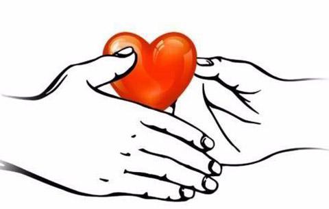 安徽一出生仅10天女婴留下生命礼物 肾脏挽救11岁女孩