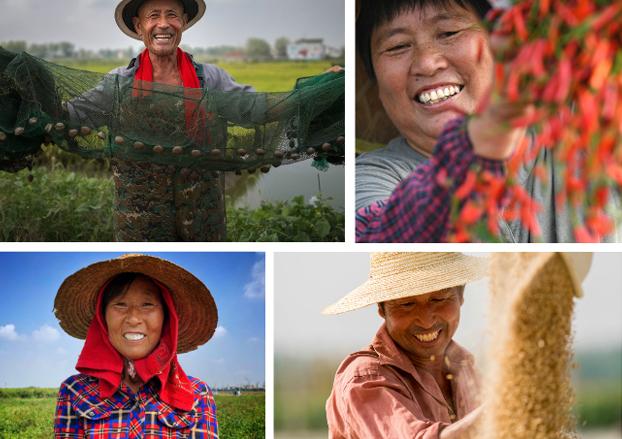 中国农民丰收节|丰收的笑脸