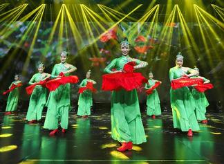 安徽舞蹈团获广场舞大赛全国总决赛亚军