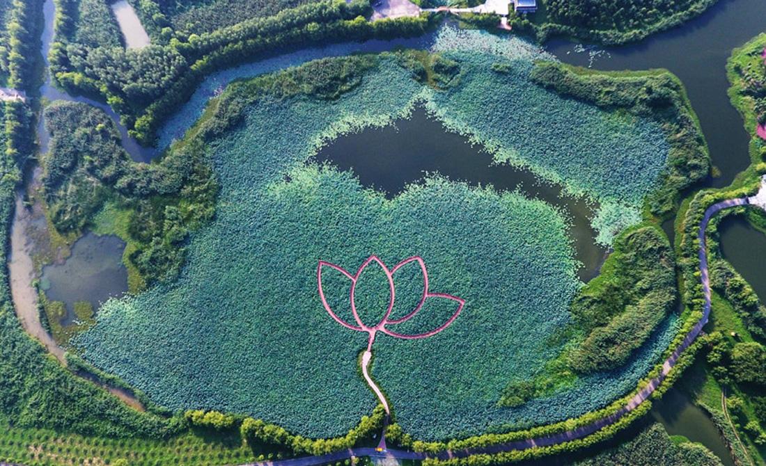 蚌埠閘濕地公園