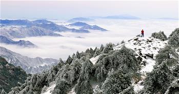 雪後黃山美