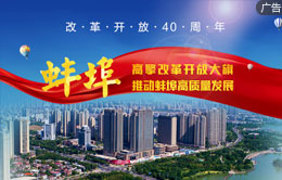 蚌埠:高擎改革开放大旗 推动蚌埠高质量发展