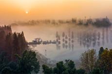 生態公園的早晨