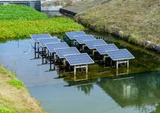 塘橋河整治工程見成效