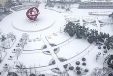 和平廣場雪景