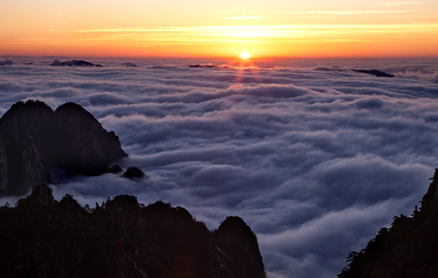 浮光躍金山壯闊 雲海漫卷景如畫