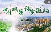 中国碳谷 绿金淮北