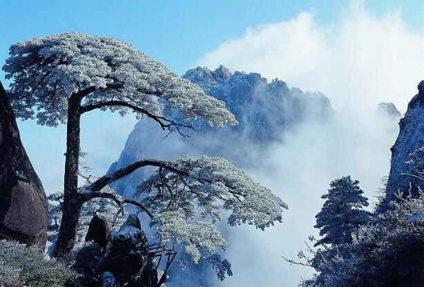 黄山旅游倾情推出大型爱心公益之旅活动