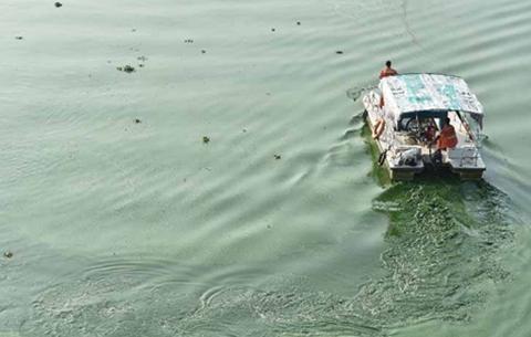 巢湖藍藻水華預警和應急監測工作已啟動