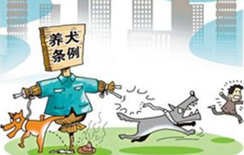 池州出臺犬類管理新規:犬只咬傷他人,主人最高被罰2萬